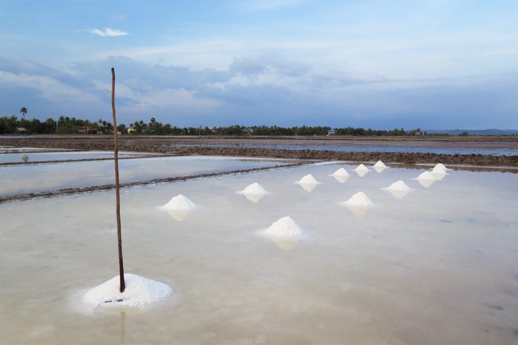marais salants Kampot bilan Cambodge blog voyage 2016 16