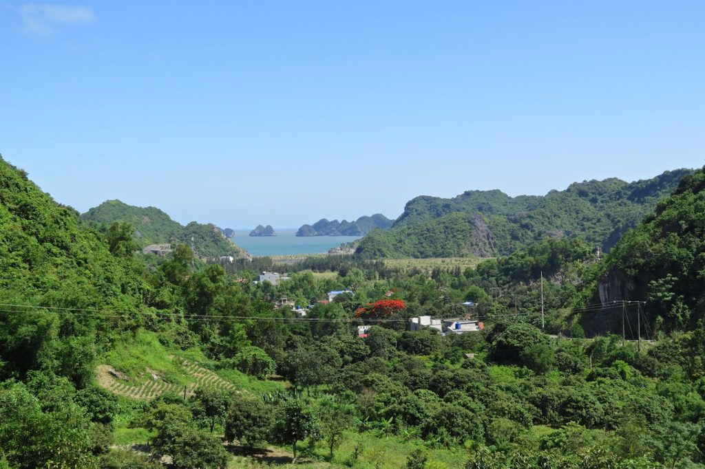 Vue ville Cat Ba Baie Halong Vietnam blog voyage 2016 12