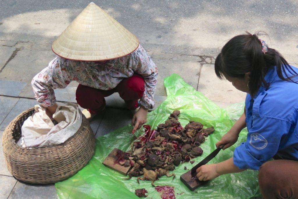 Vendeuse de rue Hanoi Vietnam blog voyage 2016 12