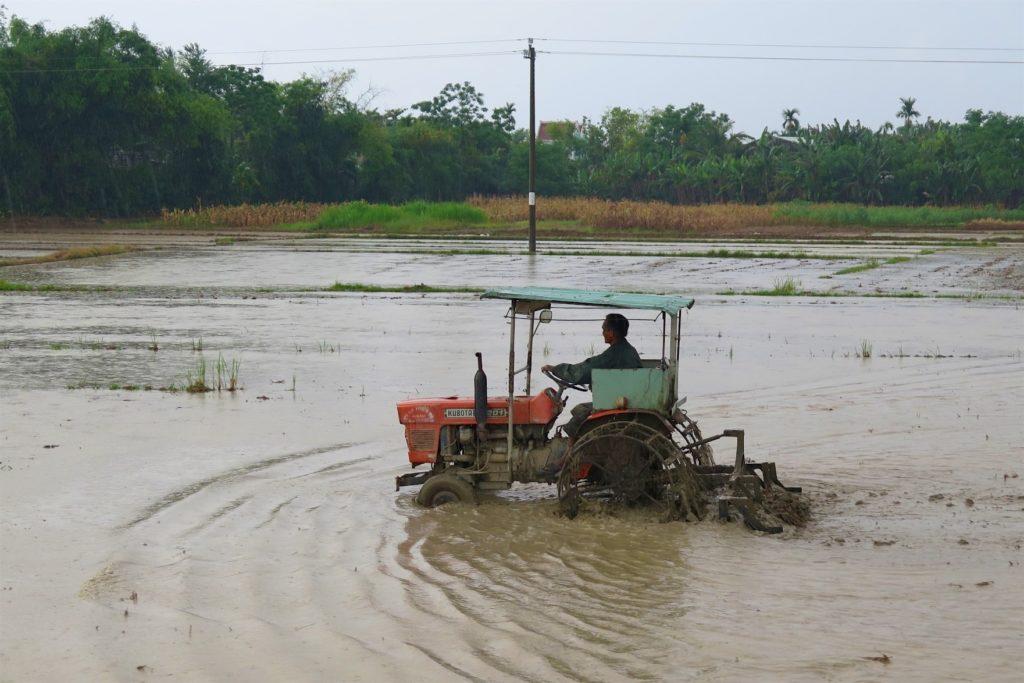 Agriculteur Hoi An Vietnam blog voyage 2016 31