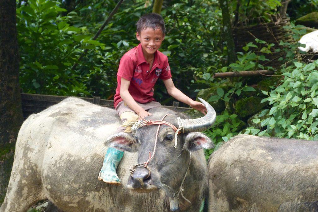 Enfant buffle Trek Sapa Vietnam blog voyage 2016 29