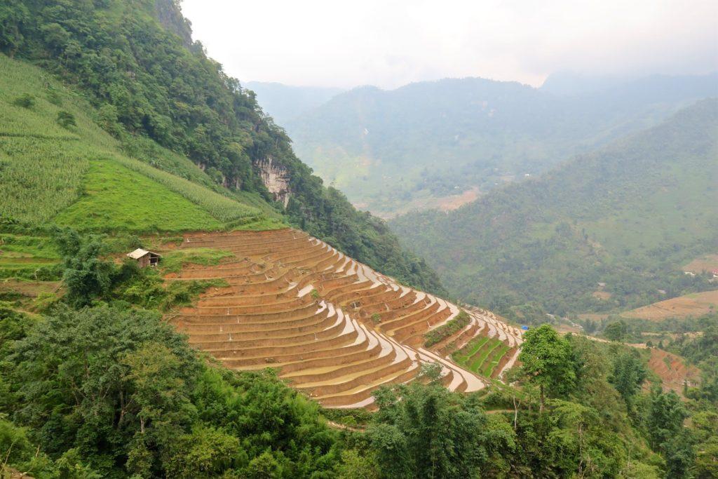 Rizières Trek Sapa Vietnam blog voyage 2016 31