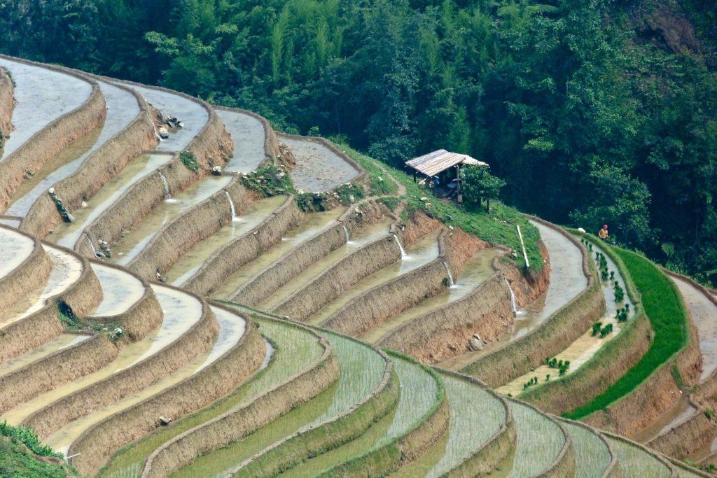 Rizieres Trek Sapa Vietnam blog voyage 2016 39
