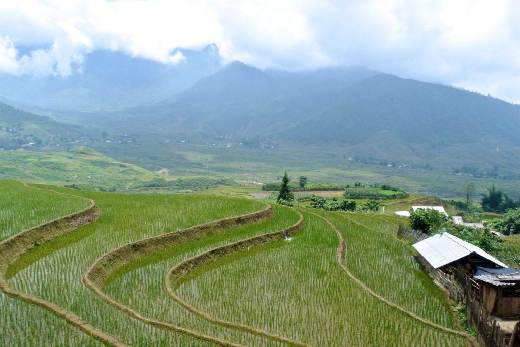 Rizieres Trek Sapa Vietnam blog voyage 2016 47