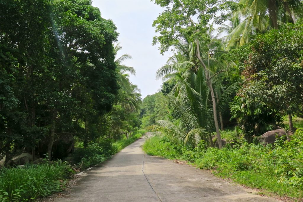 Routes Koh Phangan Thailande blog voyage 2016 14