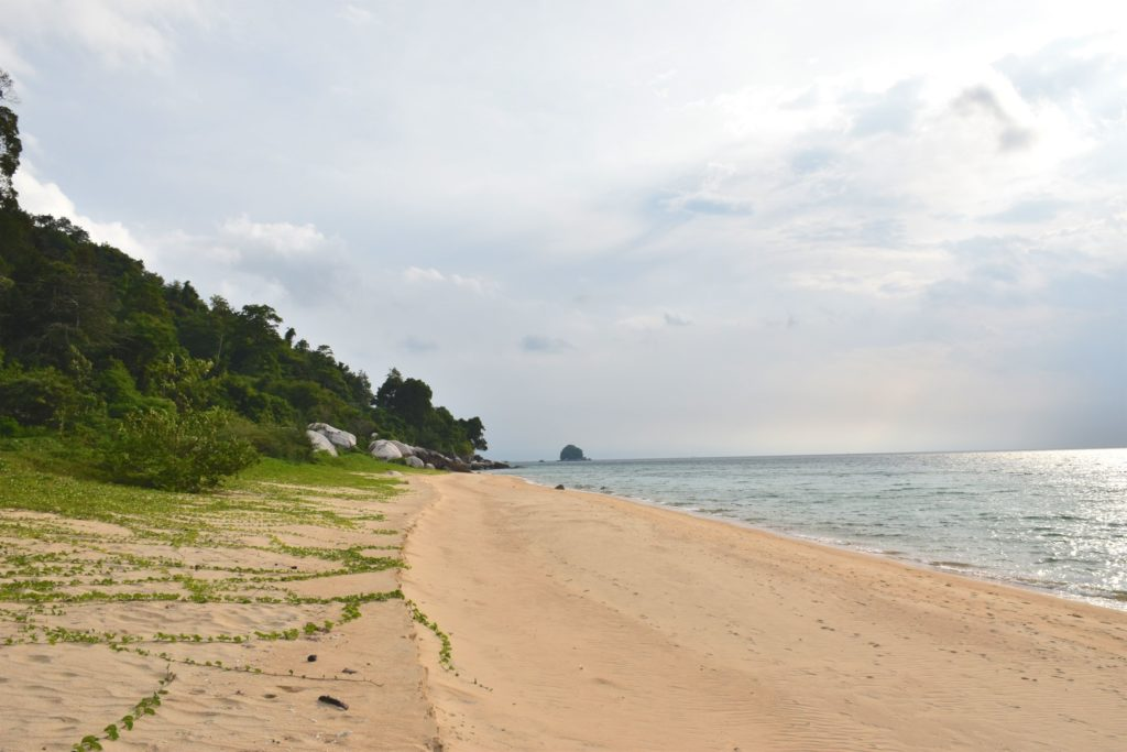 Tekek Beach Palau Tioman Malaisie blog voyage 2016 45