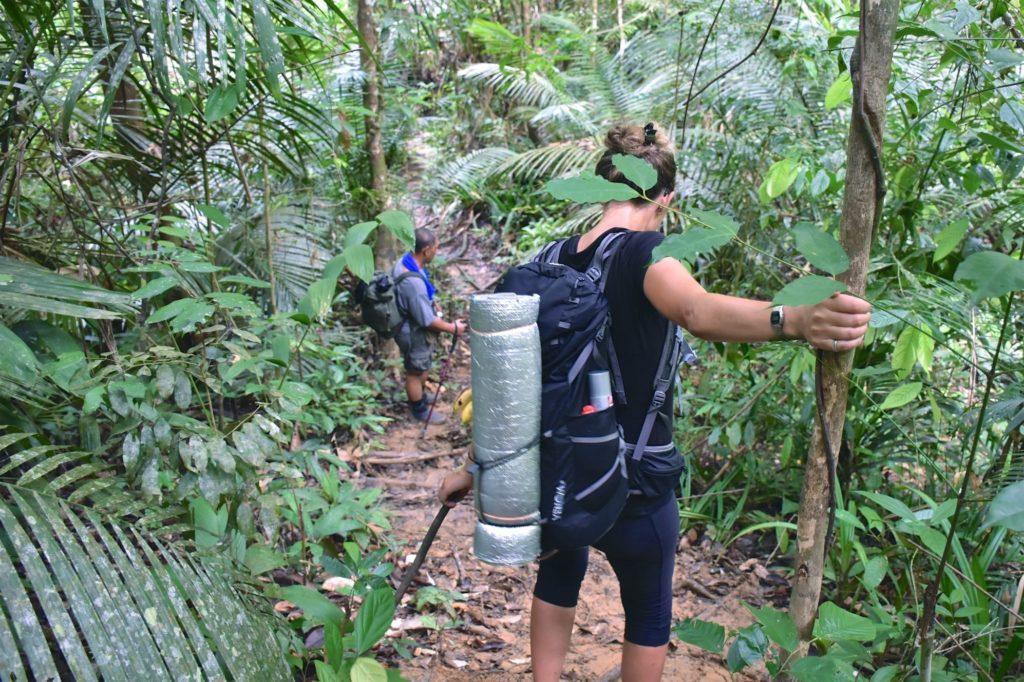 Trek Taman Negara Malaisie blog voyage 2016 18