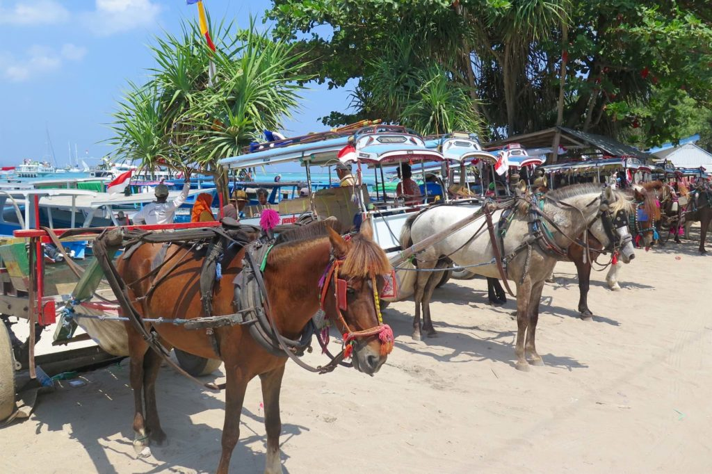 Parking gili-air-gili-meno-lombok-indonesie-blog-voyage-2016-16