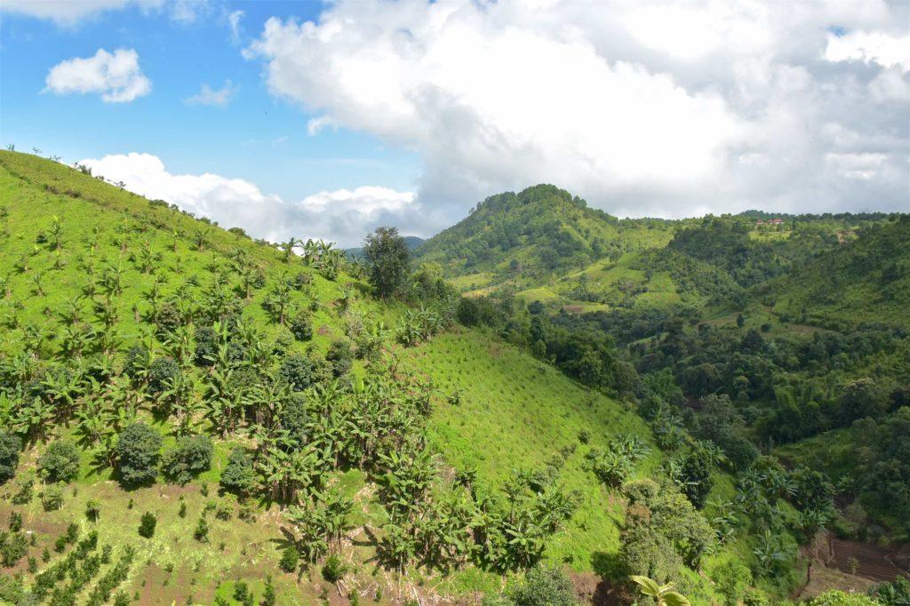 Paysage Kalaw-Myanmar-Birmanie-blog-voyage-2016 11