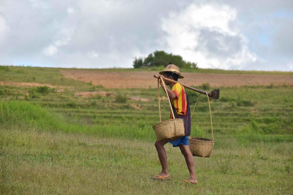 Travailleur champs Trek-Kalaw-Inle-Myanmar-blog-voyage-2016 25