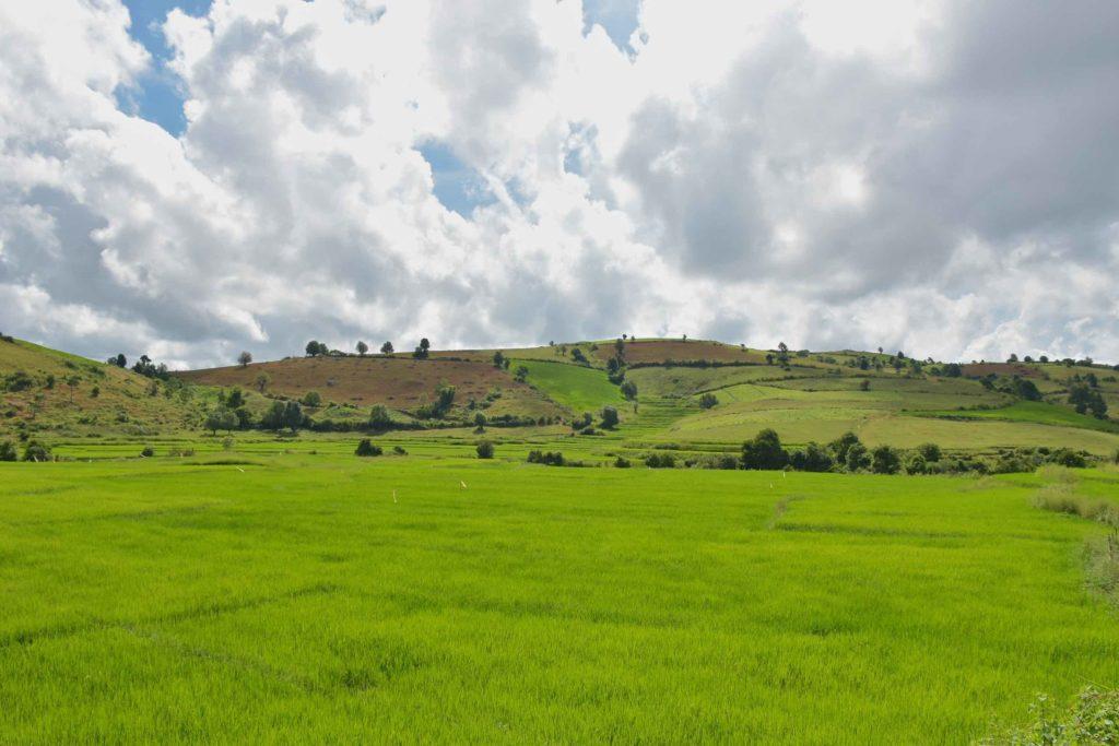 Rizieres Trek-Kalaw-Inle-Myanmar-blog-voyage-2016 26
