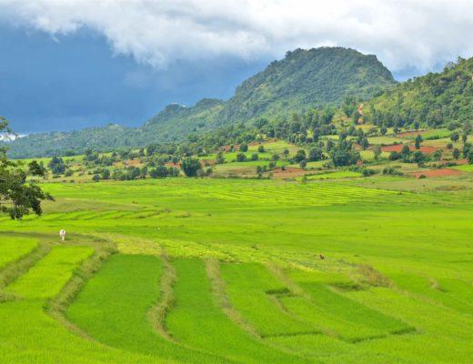 Vallée rizières Trek-Kalaw-Inle-Myanmar-blog-voyage-2016 53