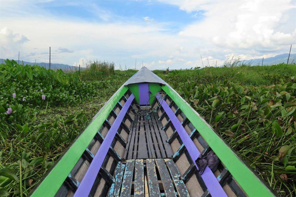 Jacinthe d'eau Lac-Inle-Myanmar-blog-voyage-2016 81