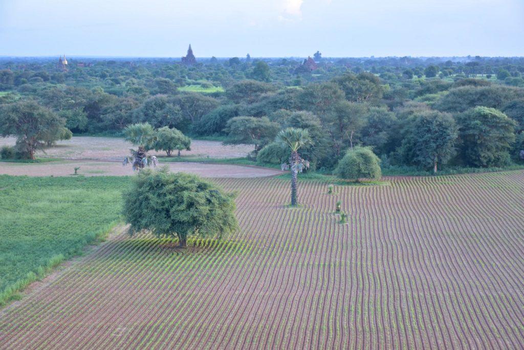 Pagode Pyathada Decouverte-Bagan-Myanmar-Birmanie-blog-voyage-2016 81