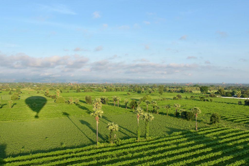 Ombre Montgolfieres-Bagan-Myanmar-Birmanie-blog-voyage-2016 28