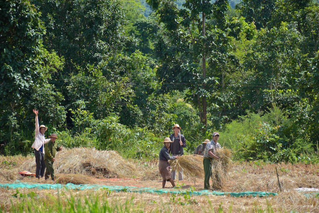 Agriculteurs Pyin-Oo-Lwin-Gohteik-Myanmar-blog-voyage-2016 17