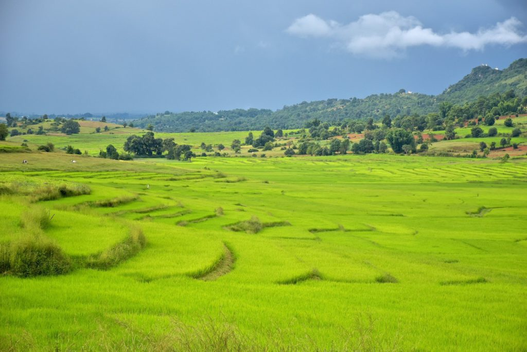 Rizieres trek Kalaw Inle Bilan-Myanmar-Birmanie-blog-voyage-2016 10